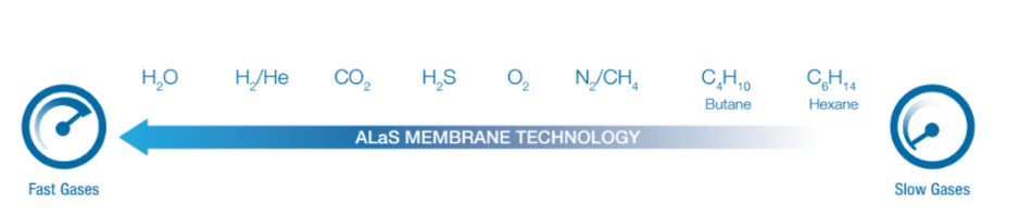 methanol purge, gas permeation speed, hydrogen recovery, syngas, membrane, permeation